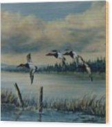 Canvasbacks Over Lake Earl Wood Print