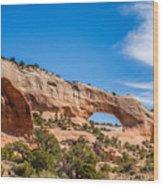 Canyon Badlands And Colorado Rockies Lanadscape Wood Print