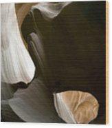 Canyon Sandstone Abstract Wood Print