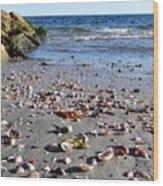 Cape Cod Beach Finds Wood Print