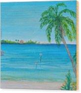 Cape Coral Beach Wood Print