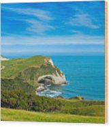 Cape Farewell Able Tasman National Park Wood Print