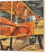 Caproni, Ca. 36 Bomber Wood Print