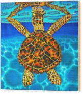 Caribbean Hawksbill Sea Turtle Wood Print