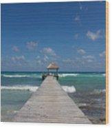 Caribbean Landing Wood Print