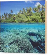 Caroline Islands, Pohnpei Wood Print