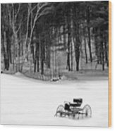 Carriage In A Field Of Snow Wood Print
