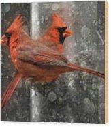 Cary Carolina Cardinals  Wood Print