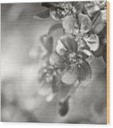 Cascade II Wood Print