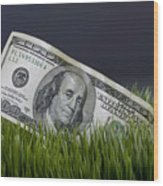 Cash In The Grass. Wood Print