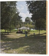 Cassadaga Spiritualist Camp In Florida Wood Print