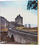 Castle Eilean Scotland Wood Print
