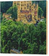 Castle Hohenschwangau Wood Print