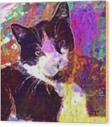 Cat Feline Pet Animal Cute  Wood Print