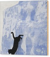 Cat Jumping From A Wall Wood Print