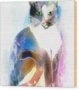 Cat Of Many Colors Wood Print