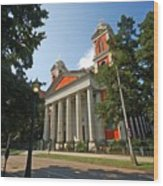 Cathedral Basilica Of The Immaculate Conception Wood Print