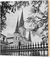 Cathedral Basilica - Square Bw Wood Print