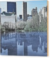 Central Park In New York City Wood Print