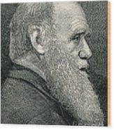 Charles Darwin, English Naturalist Wood Print