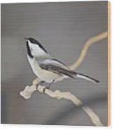 Chickadee Wood Print