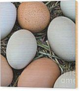 Chicken Eggs Wood Print