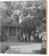 Chinese Garden Wood Print