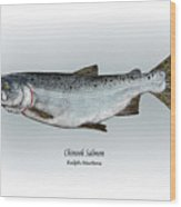 Chinook Salmon Wood Print by Ralph Martens