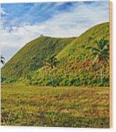 Chocolate Hills Wood Print