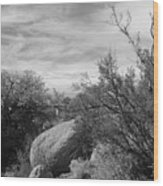 Cibola National Forest Wood Print