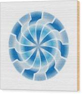 Circle Study No. 312 Wood Print