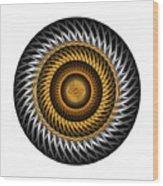 Circle Study No. 318 Wood Print