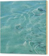 Circles On The Water Wood Print