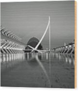 City Of Arts And Sciences Wood Print