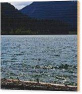 Clear Lake Washington Wood Print
