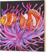 Clownfish And Sea Anenome  Wood Print