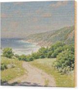 Coast Province Wood Print