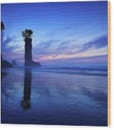 Coastline Wood Print