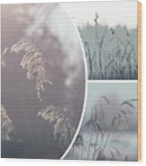 Collage Of Winter Time In Poland. Wood Print