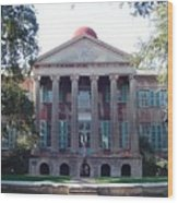 College Of Charleston Wood Print