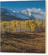Colorado Fall II Wood Print