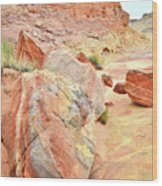 Colorful Boulders In Wash 3 In Valley Of Fire Wood Print