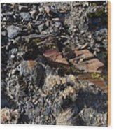 Colorful Lichens Growing On Rocks Along Monument Ridge, In The Eastern Sierra Nevadas Wood Print
