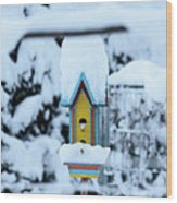 Colors In The Snow Wood Print