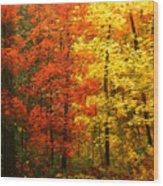 Colors Of Autumn II Wood Print
