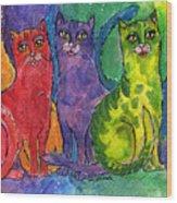 Colourful Cats Wood Print