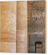 Columns With Hieroglyphs Depicted Horus At The Temple Of Edfu Wood Print by Sami Sarkis