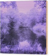 Conishead Lake Wood Print