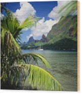 Cooks Bay With Sailboat Wood Print