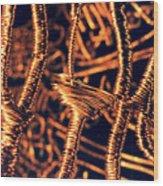 Copper Wirework Wood Print